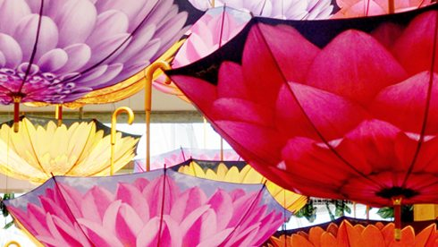 Collection of brightly coloured floral umbrellas upside down