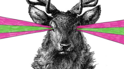 Brand strategy - Illustration of stag with pink and green stripes shooting out of its eyes