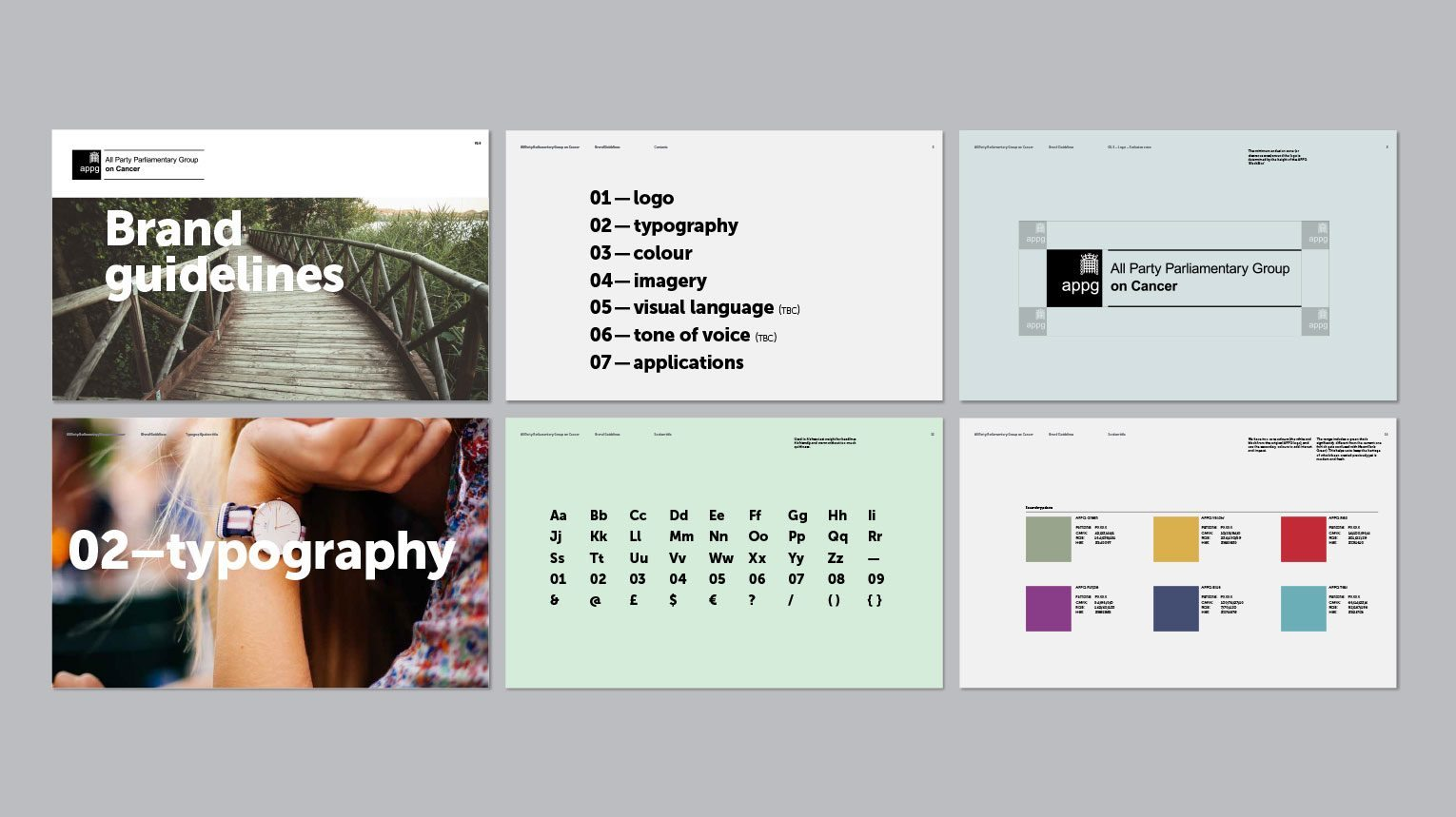 Selection of pages from the APPG new brand guidelines, typography and colour palette.